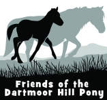 Friends Of The Dartmoor Hill Pony